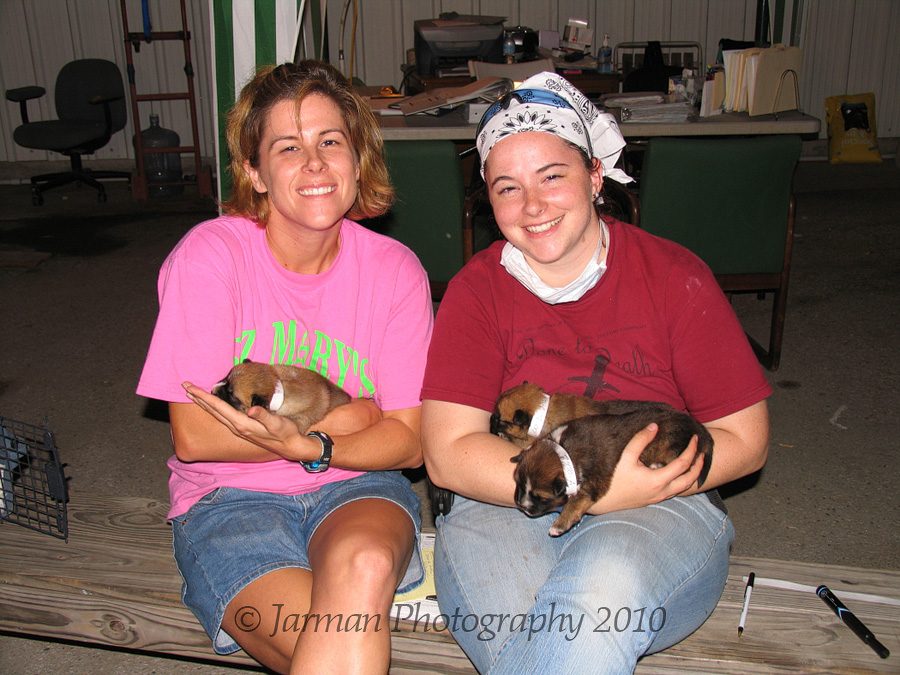 Volunteers with three puppies
